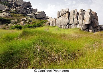 Meadow and rocks