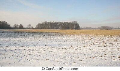 Meadow and wetland floodplain forest covered with snow in...