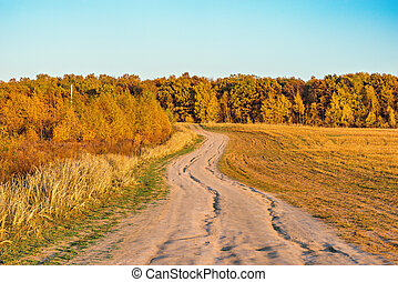 meadow., automne, route, vue