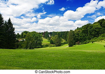 Beautiful vivid green meadow is surrounded by a forest and a blue cloudy sky