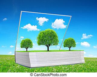 meadow., boek, open, bomen, natuur