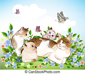 meadow., chatons, family., chat, ?ats, heureux