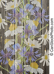 Meadow flowers on a wood background
