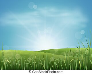 Meadow grass and sky