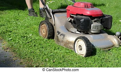 meadow grass cut