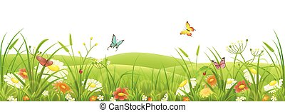 Meadow, green grass and flowers
