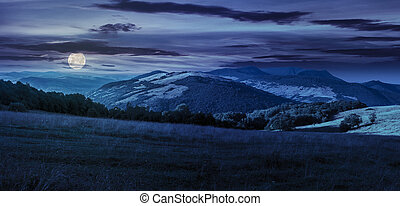 meadow in high mountains at night - panoramic summer...