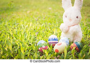 meadow., jaja, wielkanocny królik, cukier