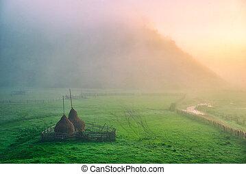 meadow., jesień, haystacks, krajobraz