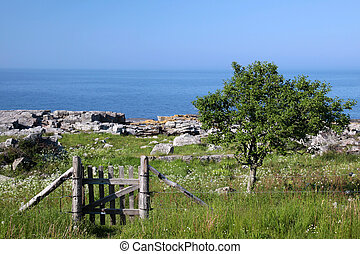 Meadow land with gates at sea on Bornholm, Denmark