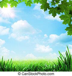 meadow., natural, resumen, fondos, optimista