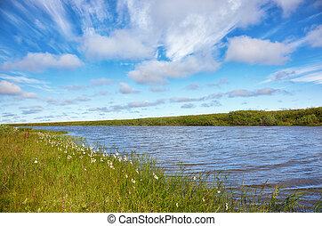 Meadow near channel of river Kolyma in Sakha Yakutia