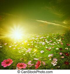 meadow., nevelig, natuurlijke , abstract, achtergronden, morgen, ontwerp, jouw