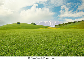 Peaceful landscape with meadow, hills, mountains and sky