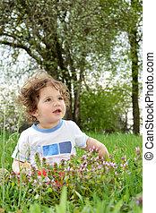 meadow., petite fille, séance
