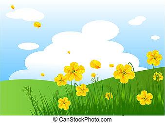 Meadow praise background