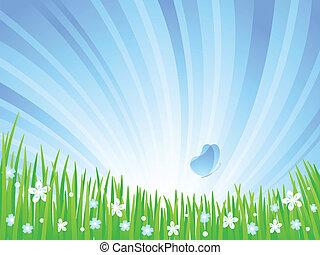meadow., primavera