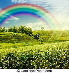 meadow., regenboog, natuurlijke , abstract, achtergronden, ontwerp, jouw