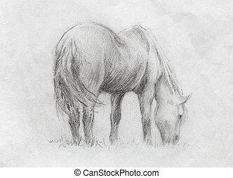 meadow., schets, paarde, grassing, papier