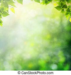 meadow., verano, natural, resumen, fondos, milagro, día
