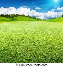 meadow., verano, resumen, ambiental, diseño, su, paisaje