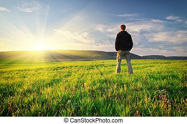 meadow., verde, hombre