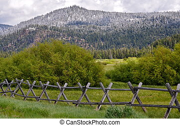meadow with a fence