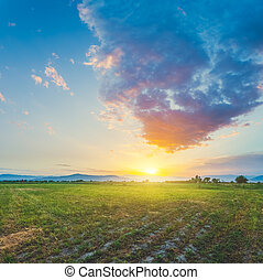Meadow with beautiful sunset sky