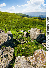 meadow with boulders in Carpathian mountains in summer -...