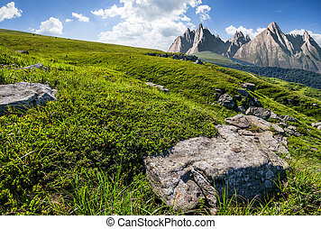 meadow with huge stones on top of mountain range - High...