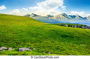 meadow with huge stones on top of mountain range - Hight...