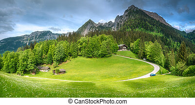 Meadow with road in Berchtesgaden National Park - Beautiful...