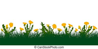 Meadow, yellow dandelions in green grass. Vector illustration.