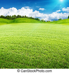 meadow., zomer, abstract, milieu, ontwerp, jouw, landscape