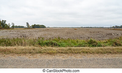 Meadowland along Prairie's Edge Wildlife Drive, Sherburne National Wildlife Refuge in Minnesota