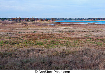 Meadows and Marshes of Necedah