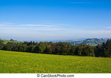 Meadows in the Austrian Alps
