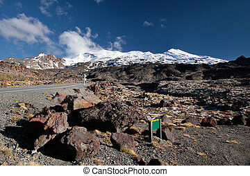 Meager landscape at Mount Ruapehu, Tongariro National Park, ...