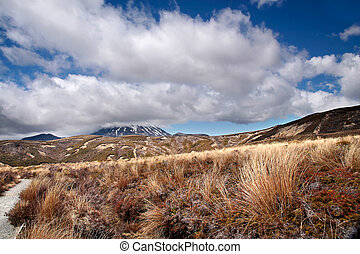 Meager landscape in the Tongariro National Park, Manawatu-...