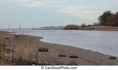 meandering beach at low tide