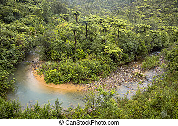 Meandering river through Forested Hills of New Zealand