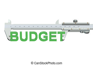 measuring budget concept