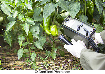 measuring radiation - Measuring radiation levels of pepper