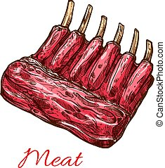 Meat ribs of pork, beef or lamb isolated sketch