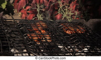 Meat roasted on a grill. Against the garden plants.
