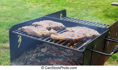 meat roasting on an open fire 4k - meat roasting on an open...