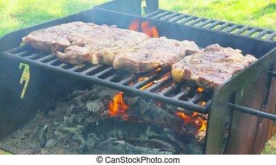 meat roasting on an open fire pork steak on an open fire