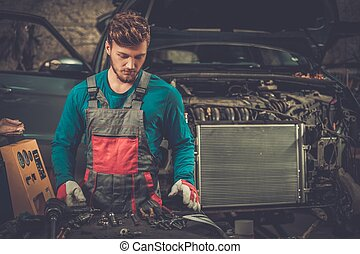 Mechanic in a workshop