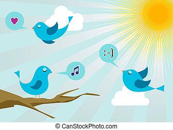 media, cinguettio, uccelli, alba, sociale