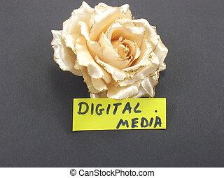 media, parola, digitale
